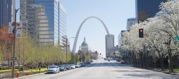 Paesaggio di giorno di St. Louis Fotografia Stock