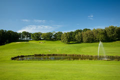 Paesaggio di golf con uno stagno Fotografia Stock