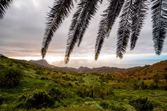 Paesaggio di Gomera della La Fotografie Stock