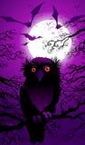 Paesaggio di Halloween Fotografia Stock