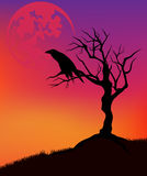 Paesaggio di Halloween Immagini Stock