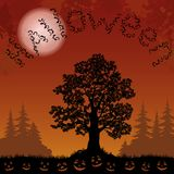Paesaggio di Halloween con i pipistrelli, gli alberi e le zucche Immagini Stock