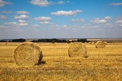 Paesaggio di Haybale Fotografie Stock