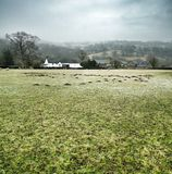 Paesaggio di Herefordshire Fotografia Stock