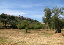 Paesaggio di Horta de Sant Joan Immagine Stock