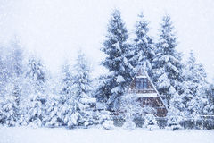 Paesaggio di inverno Fotografia Stock