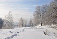 Paesaggio di inverno. Immagini Stock