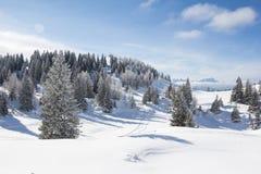 Paesaggio di inverno al Mt Dobratsch Fotografia Stock