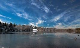 Paesaggio di inverno al parco del lago deer nella città di Burnsby Fotografie Stock Libere da Diritti