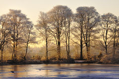 Paesaggio di inverno al tramonto fotografia stock