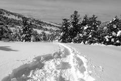 Paesaggio di inverno - alpi francesi Fotografia Stock Libera da Diritti