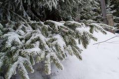 Paesaggio di inverno alto nelle montagne Fotografie Stock Libere da Diritti