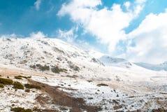 Paesaggio di inverno a Boi Taull Fotografia Stock