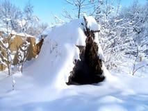 Paesaggio di inverno, bufera di neve in parco Immagini Stock Libere da Diritti