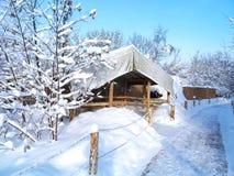 Paesaggio di inverno, bufera di neve in parco Fotografia Stock