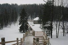 Paesaggio di inverno, cadute della neve Fotografie Stock Libere da Diritti
