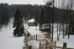 Paesaggio di inverno, cadute della neve Fotografia Stock