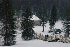 Paesaggio di inverno, cadute della neve Immagini Stock Libere da Diritti