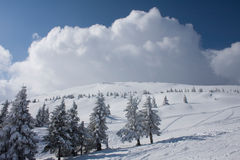 Paesaggio di inverno in Carpathians Immagine Stock Libera da Diritti