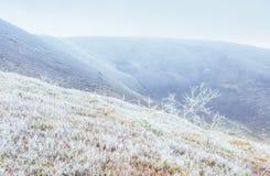 Paesaggio di inverno che emette luce dalla luce solare Scena drammatica Nebbia scenica Immagine Stock Libera da Diritti