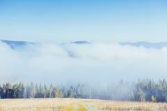 Paesaggio di inverno che emette luce dalla luce solare Scena drammatica Nebbia scenica Immagini Stock