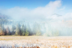Paesaggio di inverno che emette luce dalla luce solare Scena drammatica Nebbia scenica Immagini Stock Libere da Diritti