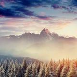 Paesaggio di inverno che emette luce dalla luce solare Scena invernale drammatica Fotografia Stock