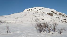 Paesaggio di inverno, cielo blu, colline Immagini Stock