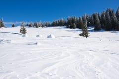 Paesaggio di inverno con cielo blu Fotografia Stock