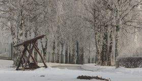 Paesaggio di inverno con gli alberi hoarfrosted Paesaggio polacco di inverno fotografato al giorno gelido e nuvoloso Immagini Stock