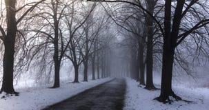Paesaggio di inverno con gli alberi hoarfrosted Paesaggio polacco di inverno fotografato al giorno gelido e nuvoloso Fotografie Stock