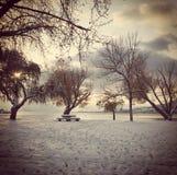 Paesaggio di inverno con gli alberi sopra lakeshore Fotografie Stock Libere da Diritti