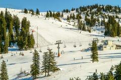Paesaggio di inverno con gli sciatori Immagine Stock Libera da Diritti