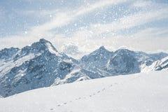 Paesaggio di inverno con i fiocchi di neve Immagini Stock Libere da Diritti