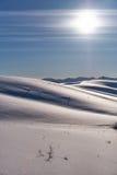 Paesaggio di inverno con i talloni sotto neve con il Sun su cielo blu Fotografia Stock