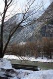 Paesaggio di inverno con il banco sulla costa del fiume in alpi in Austria Fotografie Stock Libere da Diritti