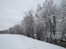 Paesaggio di inverno con il fiume Fotografie Stock