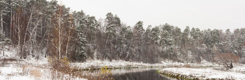 Paesaggio di inverno con il fiume Immagini Stock Libere da Diritti