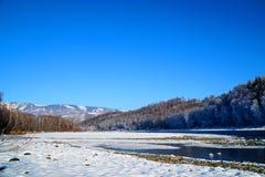 Paesaggio di inverno con il fiume di Katun alle montagne di Altai Immagine Stock Libera da Diritti