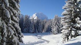 Paesaggio di inverno con il picco di montagna Fotografie Stock