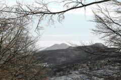 Paesaggio di inverno con il supporto di Summano e foreste ricoperte in sno Fotografie Stock