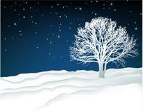 Paesaggio di inverno con l'albero solo Fotografia Stock Libera da Diritti