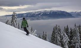 Paesaggio di inverno con la foresta degli abeti coperta da forte nevicata in montagna di Postavaru, località di soggiorno di Poia fotografia stock