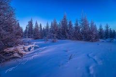 Paesaggio di inverno con la foresta, il cielo nuvoloso ed il sole immagini stock libere da diritti
