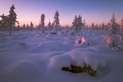 Paesaggio di inverno con la foresta, il cielo nuvoloso ed il sole fotografia stock