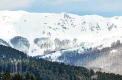 Paesaggio di inverno con la foresta nevosa alta nelle montagne Fotografie Stock Libere da Diritti