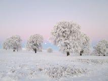 Paesaggio di inverno con la luna fotografia stock libera da diritti