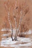 Paesaggio di inverno con le betulle Fotografia Stock Libera da Diritti