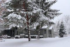 Paesaggio di inverno con le precipitazioni nevose Fotografia Stock Libera da Diritti