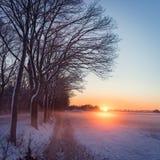 Paesaggio di inverno con lo sguardo di colore Immagini Stock Libere da Diritti